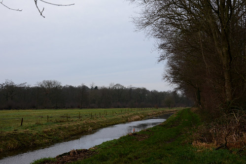 De Steenbergerloop.