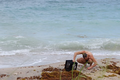 Beachcombing in South Florida in Did you mean: von mises  Search Results Web results  Dr. Von D. Mizell-Eula Johnson State Park in Dania Beach, Florida in Broward County