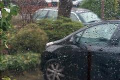 Suburban rain scene