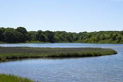 Dam Pond, Orient, NY