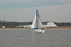 Sailboat in the Potomac River