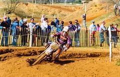 MotoCross Justin Morris, KTM
