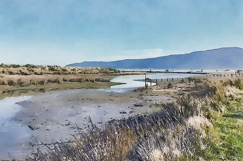 Waikanae Estuary June 2020