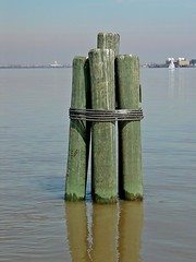 Cluster of poles in the Potomac