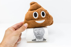 Hand hält Poop Emoji Plüschkissen auf eine Rolle Donald Trump Toilettenpapier