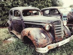 Dodge P8 1938