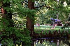 "Cincinnati - Spring Grove Cemetery & Arboretum ""Civil War Section - Memorial Day"""