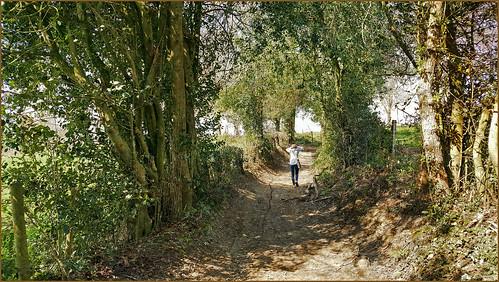 Entre Bayette et Wachiboux, Dolembreux, Sprimont, Belgique