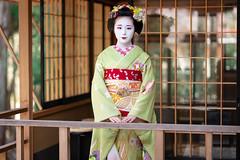 Maiko_20200329_160_5