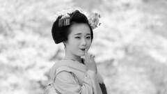 Maiko_20200329_109_6