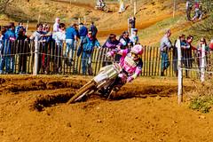 MotoCross Paul Malin, Honda , 250cc