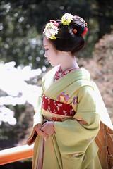 Maiko_20200329_115_15