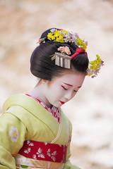Maiko_20200329_161_2