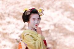Maiko_20200329_109_5