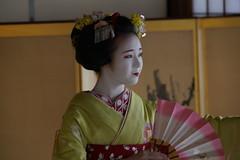 Maiko_20200329_93_19