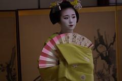 Maiko_20200329_93_28