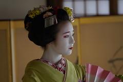 Maiko_20200329_93_29