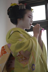 Maiko_20200329_93_33
