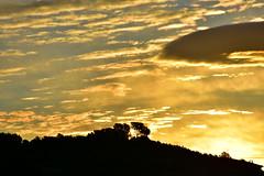 Sortida del Sol, el Terme, Torrelles de Foix.