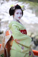 Maiko_20200329_115_3