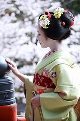 Maiko_20200329_115_14
