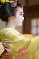 Maiko_20200329_161_7