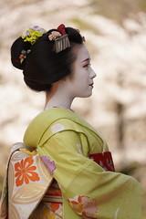 Maiko_20200329_93_1