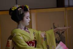 Maiko_20200329_93_13