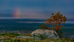 Fleeting northern rainbow