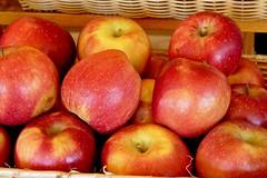 Apples at Roanoke City Market