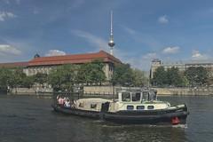 2018-08-12 DE Berlin-Mitte, Spree, Rolandufer, Berliner Fernsehturm, Jimmy B4066