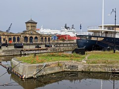 Poppies, P&O Ferries and Pigeons! Leith Docks, June 2020