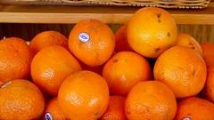 Oranges at Roanoke City Market