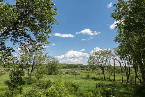 Pheasant Branch Conservancy