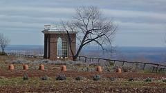 Gardens at Monticello [03]