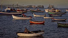 Portugal - Sagres - Fishing boats (1977)
