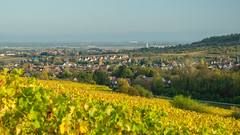 Rosheim depuis les vignes