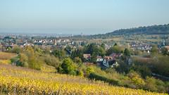 Rosheim et ses environs depuis les hauteurs