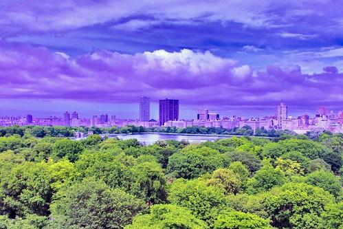 Jacqueline Kennedy Reservoir Central Park June 2020