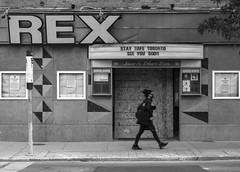 The Rex 1592