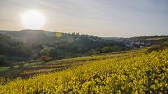 Soleil écrasant sur Rosenwiller et sa grande colline