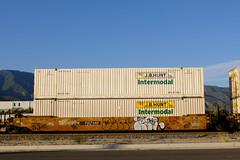 Freight Train Graffiti Benching,  June,12,2020