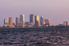 Tampa from Ballast Point