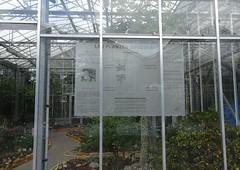 Serre des plantes succulentes Jardin Botanique de Tourcoing