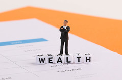 Businessman figure with Wealth text