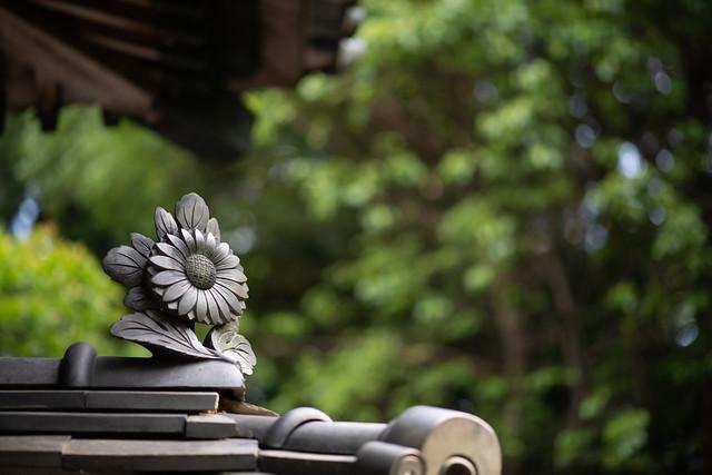 Photo:20200530 Okudono jinya 3 By BONGURI