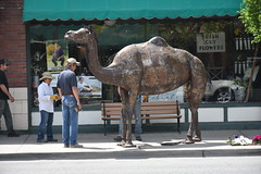 Baker County Tourism – www.travelbakercounty.com 61218