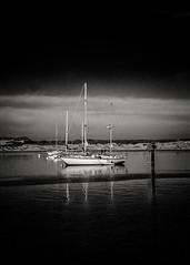 Yachts in a Line in Morro Bay B&W