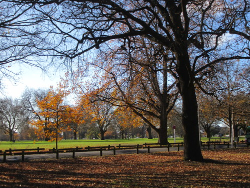 North Hagley Park