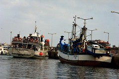The contrast between a fishing and Tourist  boats